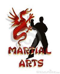 خرید لباس کاراته شوتوکان